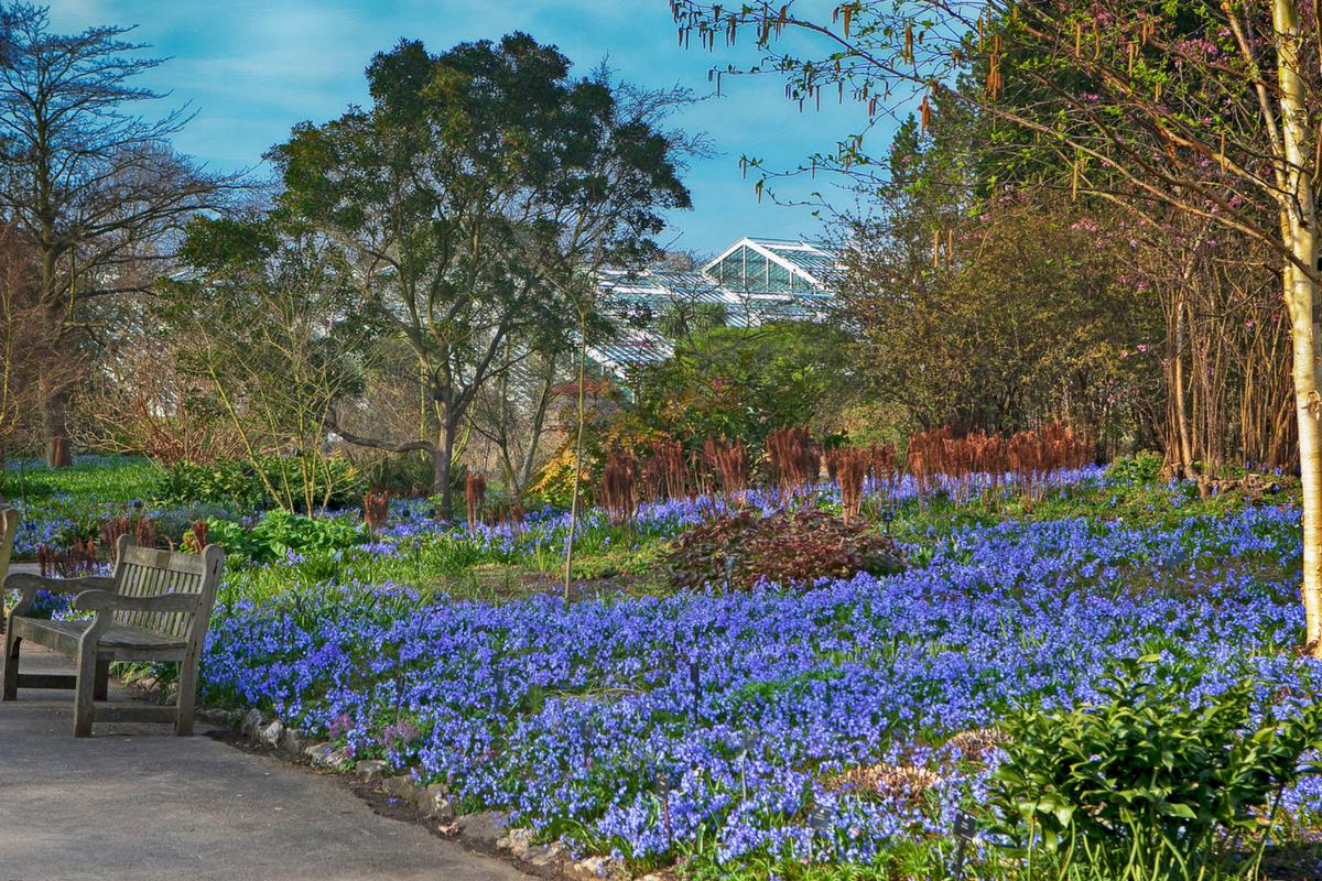 Spectacular Gardens